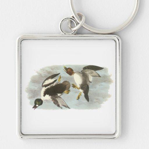 Common Goldeneye, John Audubon Keychain