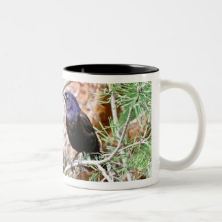 Common Grackle Mug