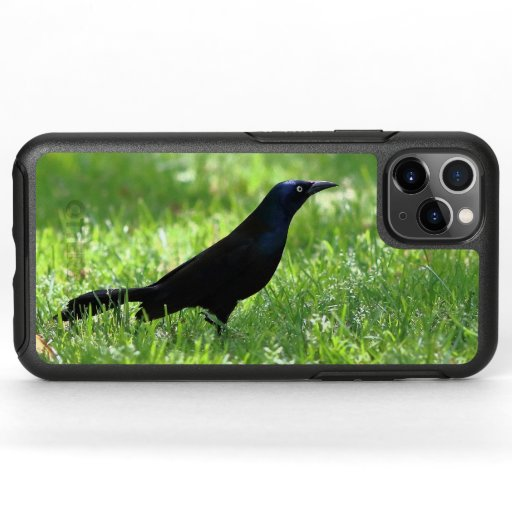 Common Grackle, Otterbox iPhone Case.