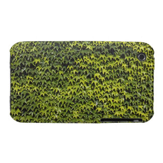Common ivy (hedera helix) at house wall Case-Mate iPhone 3 cases
