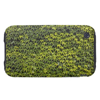 Common ivy (hedera helix) at house wall iPhone 3 tough case