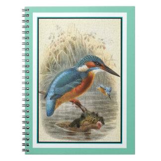 Common Kingfisher Vintage Illustration Notebook