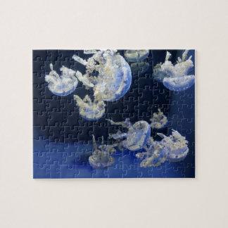 Common Lagoon Jelly Jigsaw Puzzle