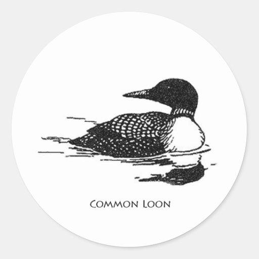 Common Loon Classic Round Sticker
