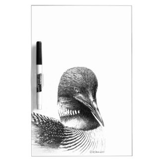 Common Loon Illustration Dry-Erase Board