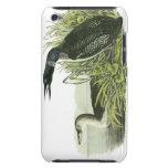 Common Loon, John Audubon iPod Touch Case