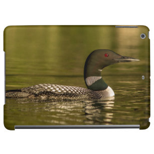 Common Loon Male On Beaver Lake Near Whitefish Cover For iPad Air