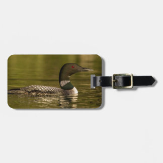 Common Loon Male On Beaver Lake Near Whitefish Luggage Tag