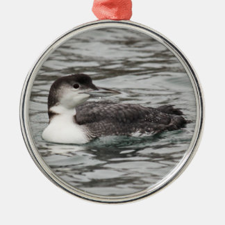 Common Loon Metal Ornament