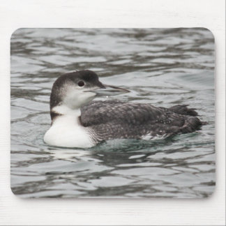 Common Loon Mouse Pad