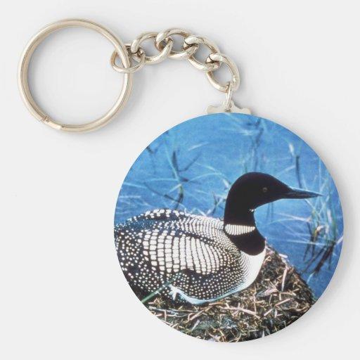 Common Loon on Nest Basic Round Button Keychain