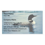 Common Loon on Water Business Card
