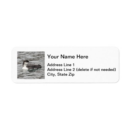 Common Loon Return Address Label
