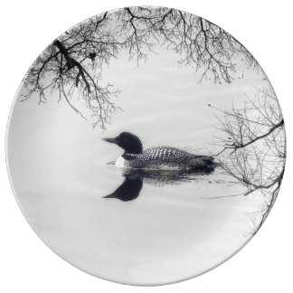 Common Loon Swims in a Northern Lake in Winter Dinner Plate