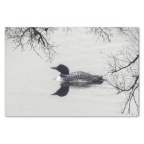 Common Loon Swims in a Northern Lake in Winter Tissue Paper