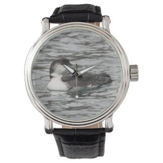 Common Loon Wrist Watch