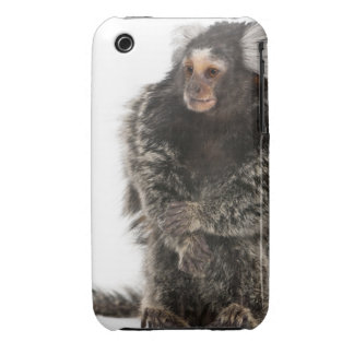 Common Marmoset - Callithrix jacchus (2 years iPhone 3 Case