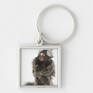 Common Marmoset - Callithrix jacchus (2 years Keychain