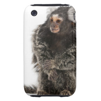 Common Marmoset - Callithrix jacchus (2 years Tough iPhone 3 Case