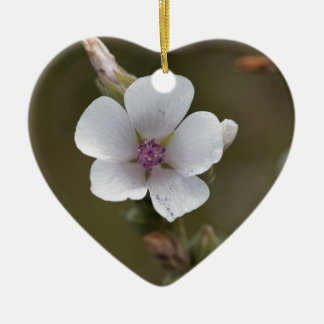 Common marsh mallow, Althaea officinalis Ceramic Ornament