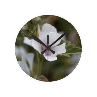 Common marsh mallow, Althaea officinalis Round Clock