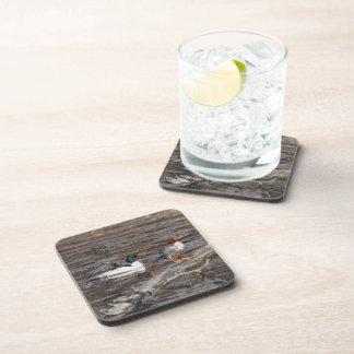 Common Merganser Beverage Coasters