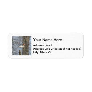 Common Merganser Label