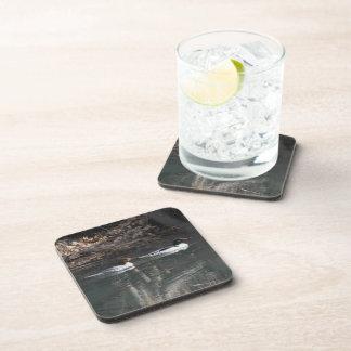 Common Mergansers Drink Coasters