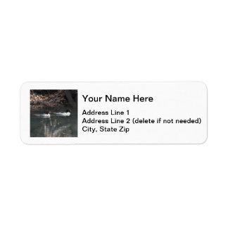 Common Mergansers Label