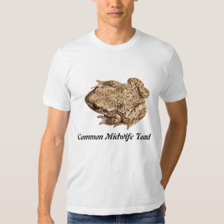 Common Midwife Toad Tees