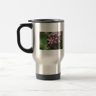 Common milkweed bud with leaves in background coffee mugs