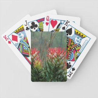 Common Mimetes (Mimetes Cucullatus) Bicycle Playing Cards