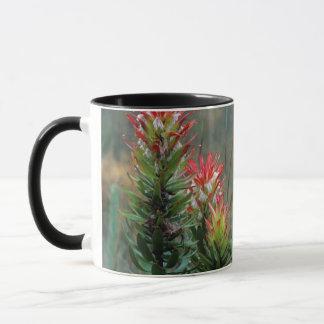 Common Mimetes (Mimetes Cucullatus) Mug