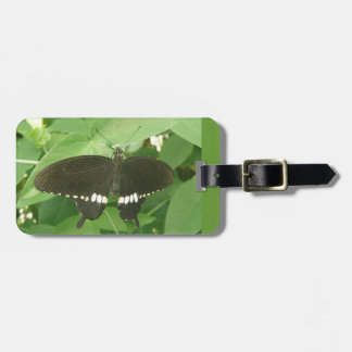 Common Mormon Butterfly Custom Luggage Tag