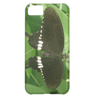 Common Mormon Butterfly iPhone Case
