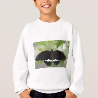 Common mormon butterfly sweatshirt