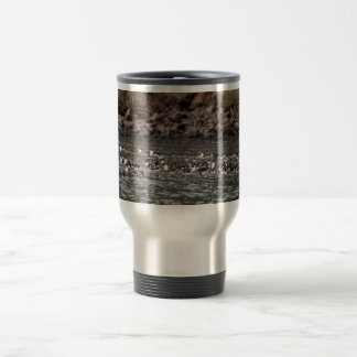 Common Murres on the Water 15 Oz Stainless Steel Travel Mug