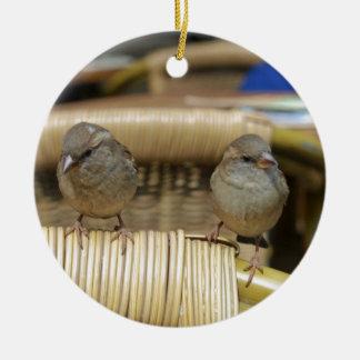 Common Nightingale bird Ceramic Ornament