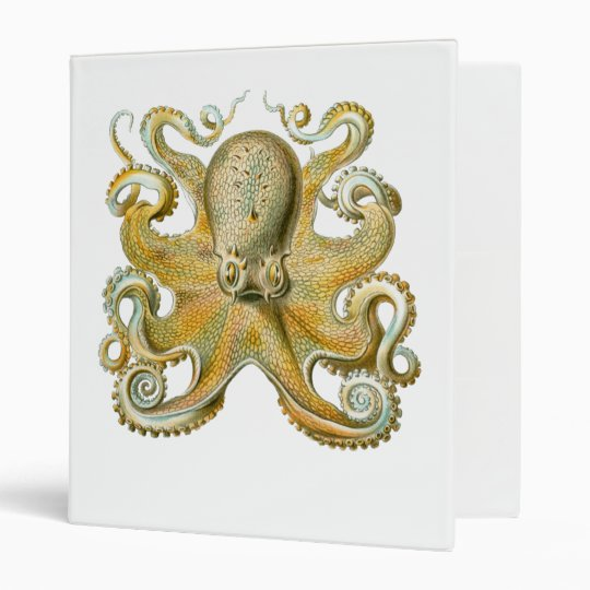 Common Octopus 3 Ring Binder