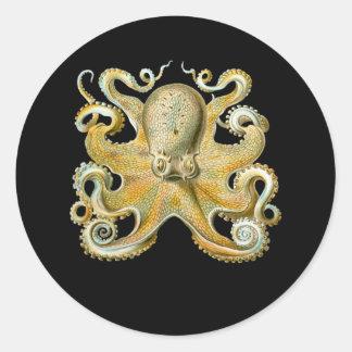 Common Octopus Classic Round Sticker