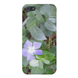 Common Periwinkle, Vinca Minor, on Roadside iPhone 5 Covers