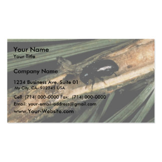 Common Pine Shoot Beetle Double-Sided Standard Business Cards (Pack Of 100)
