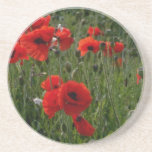 Common poppies flowers coasters