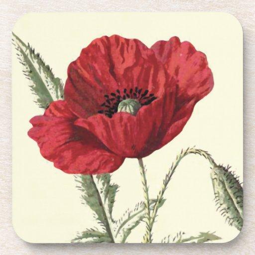"""""""Common Poppy"""" Botanical Illustration Beverage Coaster"""