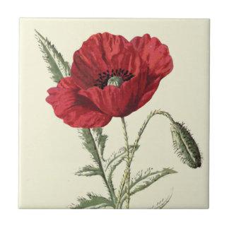 """""""Common Poppy"""" Botanical Illustration Ceramic Tile"""