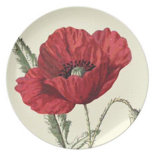 """""""Common Poppy"""" Botanical Illustration Dinner Plate"""