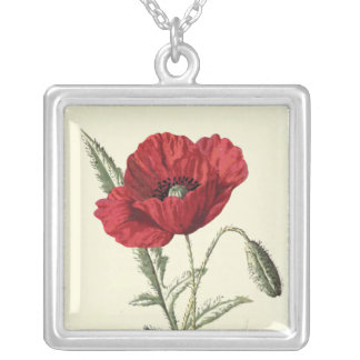 """Common Poppy"" Botanical Illustration Square Pendant Necklace"