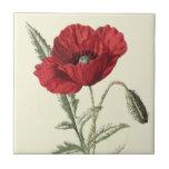 """""""Common Poppy"""" Botanical Illustration Tiles"""