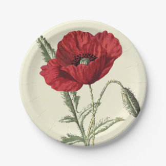 Common Poppy Vintage Botanical Illustration Paper Plate