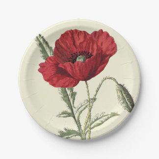 Common Poppy Vintage Botanical Illustration 7 Inch Paper Plate